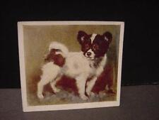 Vintage British Cigarette Card: PAPILLON Puppy Godfrey Phillips, Ltd.