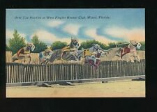 Post-War (1945-Present) Florida Collectable USA Postcards