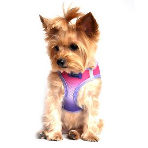 American River Choke Free Dog Harness Ombre Collection Raspberry Sundae  XXS-3XL