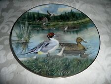 BRADEX COLLECTORS PLATE - DUCKS - 'THE PINTAIL'