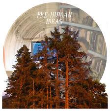 Mount Eerie Pre-Human Ideas Vinyl LP PICTURE DISC Record & MP3! microphones NEW!