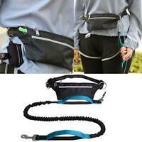 Joggingleine für Hunde mit verstellbarem Taillengürtel, Bungee-Leine zum Freispr