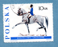 POLAND stamp 1967 Racehorse breeding. SG1486 Dressage