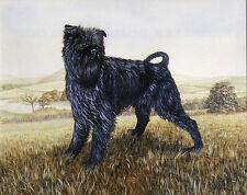 AFFENPINSCHER CHARMING DOG GREETINGS NOTE CARD BEAUTIFUL STANDING DOG