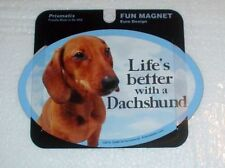 Unmounted Dachshund Collectable Novelties