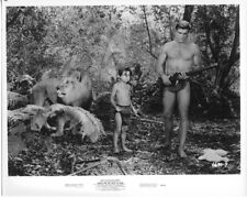 Tarzan And The Valley Of Gold Mike Henry Manuel Padilla Original Photo with lion