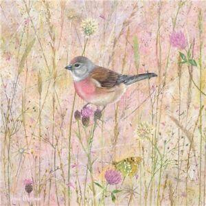 Linnet Bird Greetings Card - Anne Mortimer birthday blank inside finch