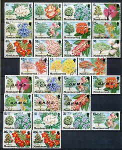 MONTSERRAT 1976-1980 - FLOWERING TREES - 38 DEFINITIVE STAMPS INCL. OVPT'S Hk601