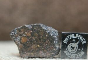 NWA 13297 LL3 C-S3 W1-3 Primitive Unequilibrated Chondrite Meteorite 1.5 grams