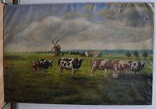 öl gemälde / weidende kühe / windmühle / um 1910