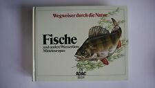 Wegweiser Durch Die Natur -- Fische Mitteleuropas - ADAC Buch