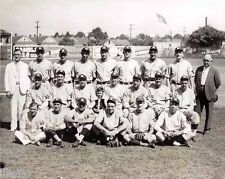 1934 NEW ORLEANS PELICANS BASEBALL TEAM 8x10 PHOTO