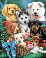 Diamond Painting 5D Full Square 60cmx45cm, Seven Puppies ,Free Post Oz Seller
