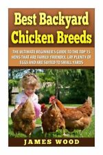 Best Backyard Chicken Breeds: The Ultimate Beginner's Guide To The Top 15 H...