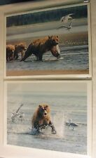 2 Grizzly Bear Photos by Michael Watts, Signed