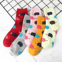 Cartoon Hedgehog Animal Pattern Soft Casual Cotton Sock Fashion Accessories