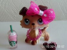 lps littlest pet shop sage collie dog #58 with accessories bow cake starbuck
