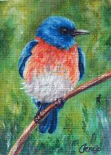 ACEO Bluebird Bird PRINT Limited Edition Miniature Painting