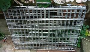 "Heavyweight Folding Metal Dog Crate 24"" x 17"" x 17"""