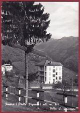 VERBANIA FINERO 20 MALESCO - VIGEZZO - VILLA S. GIUSEPPE Cartolina FOTOGR. 1958