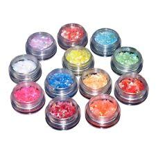 12 Color Gel Nail Art Glitter Iridescent Ice Mylar Sheet Flakes Decor