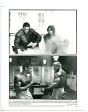 Maximum Risk-Van Damme-Henstridge-Anglade-8x10-B&W-Still-Action-Drama-NM
