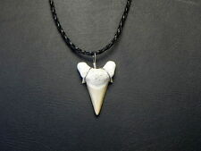 Black Braided OTODUS Great Shark Tooth Necklace Fossil white