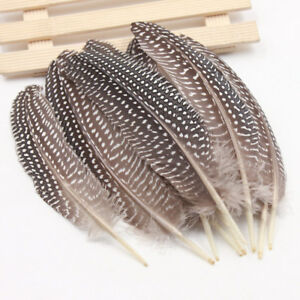 100 Pcs Natural Guinea Fowl Feather 16-19cm/ 6.3-7.5inch Decorative Diy Carnival