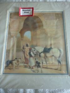 Arab Horse with owner, dogs and hawk, mounted print for framing
