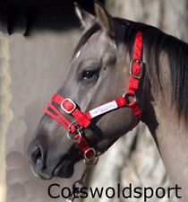 CS Monty Roberts Dually Halter headcollar & DVD SMALL Red