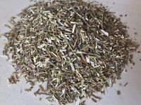 Vervain, Verbena officinalis (Organic) ~ Sacred Herbs from Schmerbals Herbals