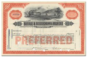 Buffalo & Susquehanna Railroad Corporation Stock Certificate