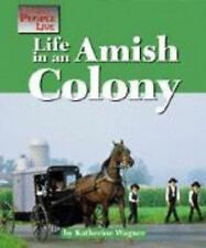 Life in an Amish Community (Way People Live)