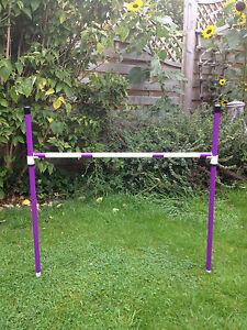 Dog Agility Basic Sliding 2 Jump & 6 Pole Weave Set by Jessejump Agility