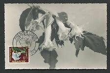 MADAGASKAR MK 1959 FLORA ENGELSTROMPETE MAXIMUMKARTE CARTE MAXIMUM CARD MC d4481