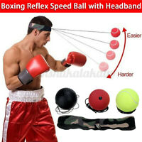 Boxer Fight Ball Head Band Speed Boxing Training Punching Workout Bag AU