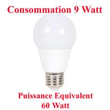 lampe Led Boule Culot E27 Puissance 9 W Equivalent Eclairage 60 Watt Blanc Chaud