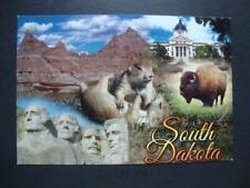 283) South Dakota, Mt Rushmore, Bison, Badlands, Capitol, Prairie Dogs, Postcard