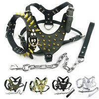 Gold Spiked Studded Dog Harness Collar Lead Set Leather for Large Dogs Pitbull