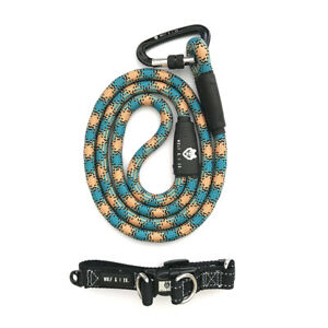 WOLF & I CO. TOUGH GREEN DOG LEASH & ANTI-RUST BLACK PUPPY COLLAR SET