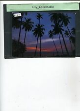 P037 # MALAYSIA PICTURE POST CARD * COCONUT TREES