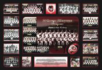 ST. GEORGE DRAGONS PREMIERSHIP HISTORY Memorabilia Limited Edition Framed COL