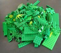 LEGO 100 g grüne Teile Steine Basics Platten Pflanzen Blätter Bäume Sondersteine