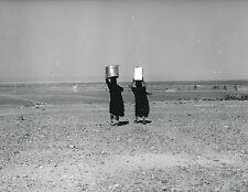 JORDANIE c. 1960  - Femmes Oasis à l'Est d'Amman - DIV8466