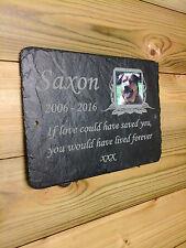 1st 4 Signs Pet Memorial Slate Plaque - 23cm X 16