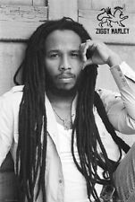 ZIGGY MARLEY POSTER (61x91cm)  PICTURE PRINT NEW ART