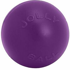 Jolly Pets Push-n-Play Purple 10 inch Ball Large Dog Toy