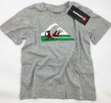 Camisetas de niño de 2 a 16 años en gris con 100% algodón