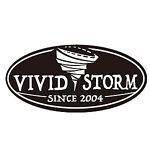VIVIDSTORM SCREEN UK store