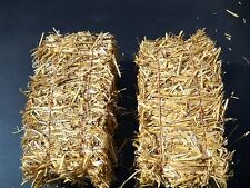 Lot of 12 Mini 12 Inch Wheat Straw Bales ... FOOT LONG!!! ..Great Item!!
